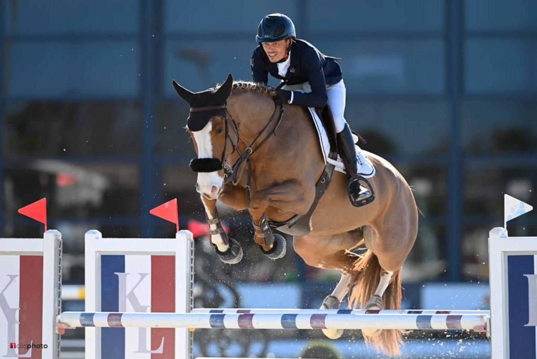 Photographie du cheval